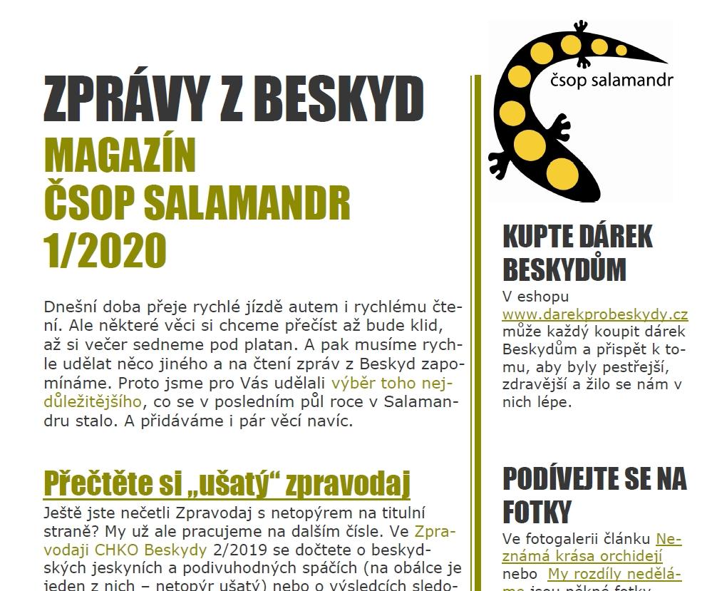 https://www.salamandr.info/assets/downloadable/newsletter-1_20.pdf