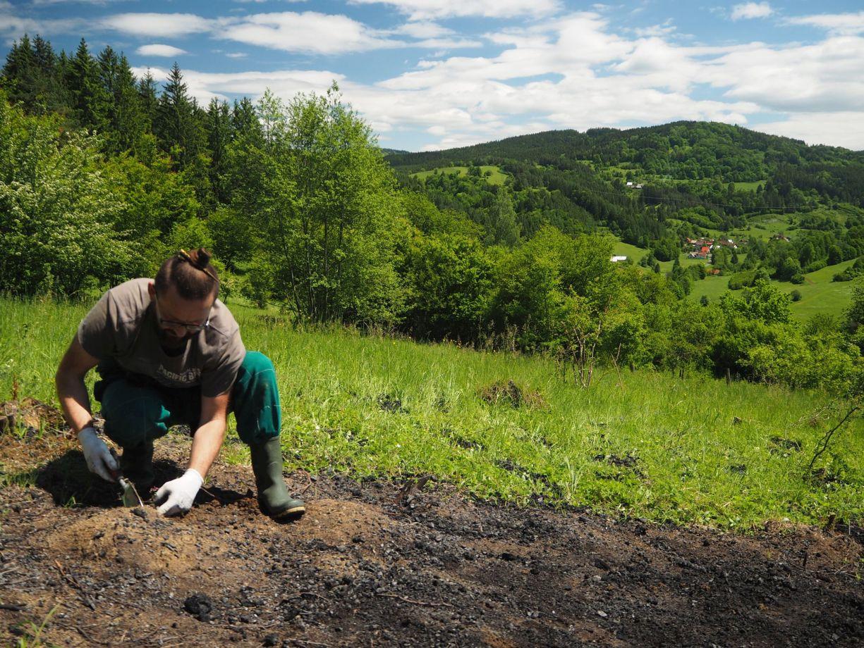 Zvýšení pestrosti beskydských luk